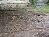 Drip irrigation setup