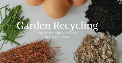 Recycling for the Garden